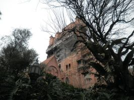 Hollywood Tower of Terror by twilson390