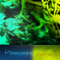 PS Brushes: Gound'n'Plants by theIwitcher
