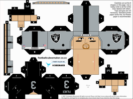 Carson Palmer Raiders Cubee by etchings13