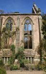 Nymans 12 - Stock by GothicBohemianStock