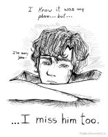 Sherlock - I miss him too by PityMau