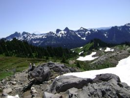 Mt Rainier National Park pt4 by ribbonfly
