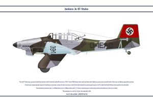 Ju 87 StG 162 1 by WS-Clave
