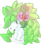 Shaymin for PVF by Kspmill
