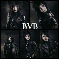 Black Veil Brides Banner 2 by AndyBsGlove
