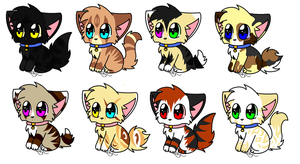 Name your price Kitten adopts by leafy-112