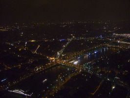 Paris at Night-View from the Eiffel Tower by ionshu