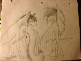 Contest entry for Me-Mie by Lightbuscus
