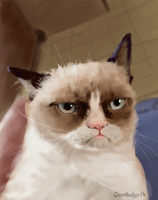 Grumpy Cat by Cannibalus