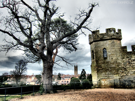 Tree of castle by FuckerBerrouz