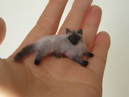 Miniature ragdoll cat by AnyaStone