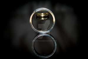 Through the Ring by cathy001