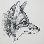 Portrait of a Wolf by artifexToils