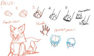heads, paws and more tut by kinja-blackrose2