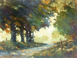 Shaded Lane by litka