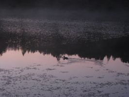 lonely is the morning bird by Charon1