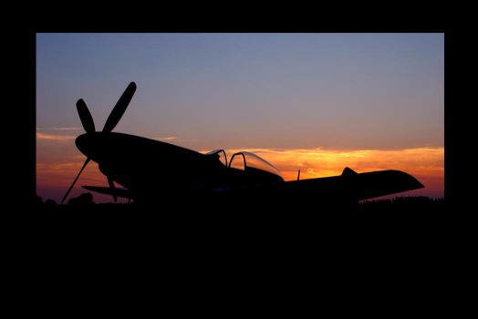 MUSTANG SUNSET by ScarredWolfphoto