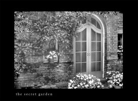 Door to the Secret Garden by niyoyin
