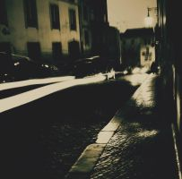 street at night III by s0n-et-lumiere
