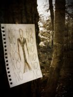 Slender. by DontTakeMyMemories