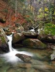 Late autumn by photogrifos