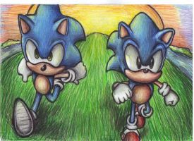 Keep on running Hedgehog by supersonicartdrawer