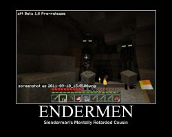 Enderman Motivational by ApocalypticRiceGllry