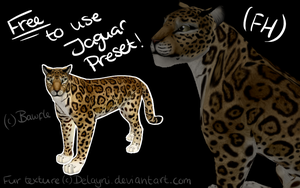 Free To Use Jaguar Preset By Bawfle by Bawfle