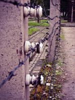 Barbed Wire by Ajumska