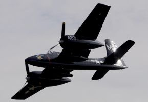 Grumman F7F Tigercat Flyby by shelbs2