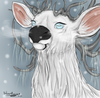 Hallfir by SilverRacoon