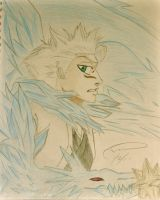 Toshiro Bankai by lovelykilljoy94