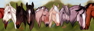 Many Faces - random horses by jassukassu