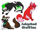 .:My Adopted Wolves:. by Aqua-Frost