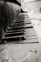 What you wish for is a melody... by Cirell100
