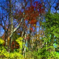 autumn reflections impression by Moon-Willow
