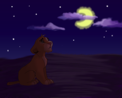 Simba Looks to the Stars by annakinz