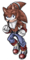 THE Hedgehog by KasaraWolf