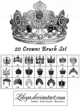 Crowns Brush set by Lileya