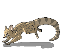 Genet Needs a Name by Aevaln
