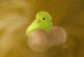 .:Picture Of Chick:. by TabbyFeather
