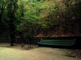 lonely bench by nimmanarati