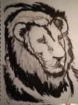 Lion by hbllop123