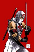 STORM SHADOW by MalevolentNate