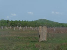 Magnetic Termite Mound by Barabi