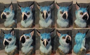 Spix macaw gryphon commissioned mask by Crystumes