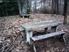 Bench. by EscapetheChaos