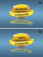 Free Guarantee and Satisfaction Badge by crazygenk