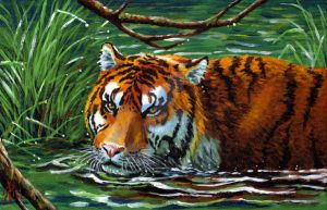 Fantasy Tiger, painting on box by rieke-b