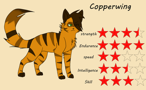 [ TDC ANIMATION ] Reference sheet Copperwing by SpiderRen